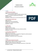 Grupo Atenas - Miología del antebrazo