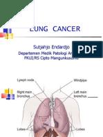 Lung Cancer Intr n Class