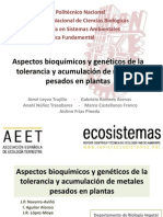Aspectos Bioquimicos y Geneticos de La Tolerancia