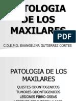 Patologia de Los Maxilares