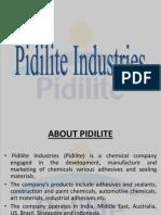 PIDILITE- Brand Bigger Than the Company