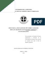 Efecto Aplicacion Cppu Fruta Arandano Alto (1)