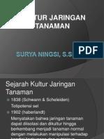 Sejarah & terminologi