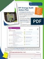 Energy Audit Action Plan 10Mar11