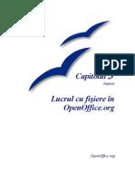 Lucru in Open Office