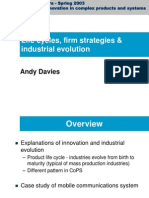 Life cycles, firm strategies & industrial evolution