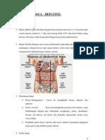 Anatomi Hepar Soca