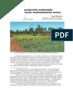 De producción sustentable a contaminación ambiental severa - Vicente Brunetti - Raúl Montero Bray