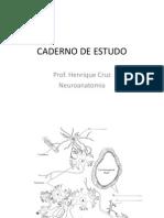 Caderno de Estudo - Neuro