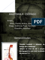 ANATOMIA ll - ESÔFAGO