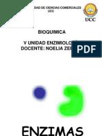 5 ENZIMAS
