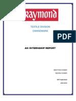 Final+Report.....+++Raymond+Chhindwara1.1