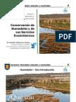 Conservación de Humedales y de sus Servicios Ecosistémicos