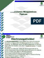 Reacciones bioquímicas típicas