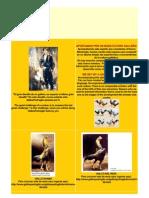 Dossier -Gallos de Pelea