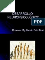 DESARROLLO NEUROPSICOLÓGICO