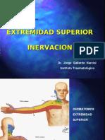 Inervacion Ext Superior1