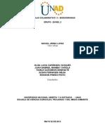 Consolidado Final_grupo - 201602_3