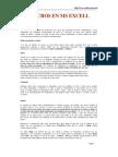 Macros en Excel PDF
