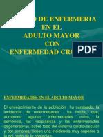 Enfermedad Cronica - Enfermeria (Pptminimizer)