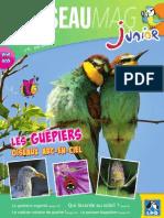 L'OISEAU MAGAZINE Junior N°11 (Extrait)