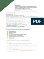 Factores necesarios para su producción.docx