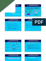 modelo de referencia.pdf