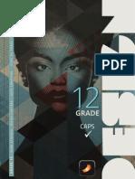 Design Grade 12