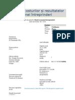 Analiza costurilor si rezultatelor unei intreprinderi 2013.doc