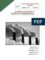 INDUSTRIALIZAÇÂO E IMPACTES AMBIENTAIS
