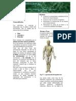 Guia de Osteolog - A