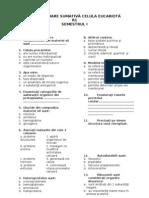 Test Evaluare Sumativa Celula Eucariota