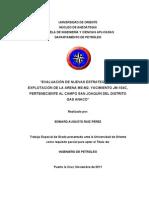 66-TESIS.IP011.R701 (1).pdf