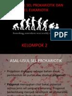 Kelompok 2 Asal Usul Sel Prokariotik Dan Eukariotik Bella Awalia Hana p Hanifah Ikhlas f Xi Ipa 1