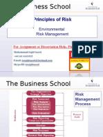 Principles of Risk - Environmental Risk