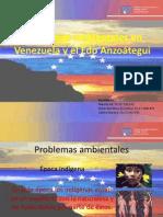 Problemas ambientales en Venezuela y el Edo Anzoátegui