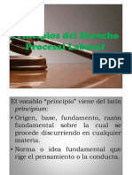 Principios Procesales Laborales