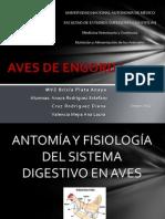 Aves de Engorda Anaya Cruz y Valencia (2)