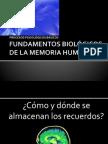 FUNDAMENTOS BIOLOGICOS DE LA MEMORIA .pptx
