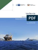 Guia Oleo Gas Oportunidades de Negocio Para Empresas Alemas No Setor Petrolifero No Brasil