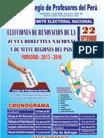 Elecciones para Renovar la Junta Directiva Nacional del CPPe