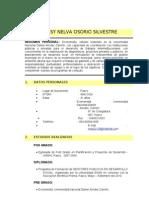 Curriculum Vitae Ros 28