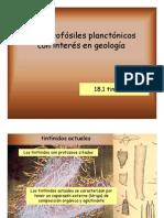 Tintínidos.pdf