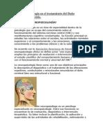 La Neuropsicología en el tratamiento del Daño Cerebral