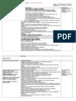Plan Periódico Nº 1 de 2.009.doc