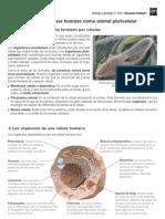 Acceso Directo a 3eso Bg Es Ud01 Doc Resumen P.conectados