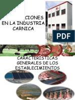 Instalaciones en La Industria Carnica Com (1)
