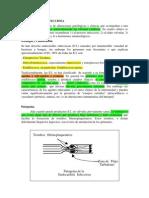 Endocarditis in Feccio s a 58956874521455