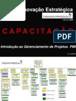 v01 - Introdução ao Gerenciamento de Projetos PMI[=]~ç][
