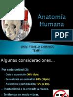 Anatomía Generalidades Yeniela